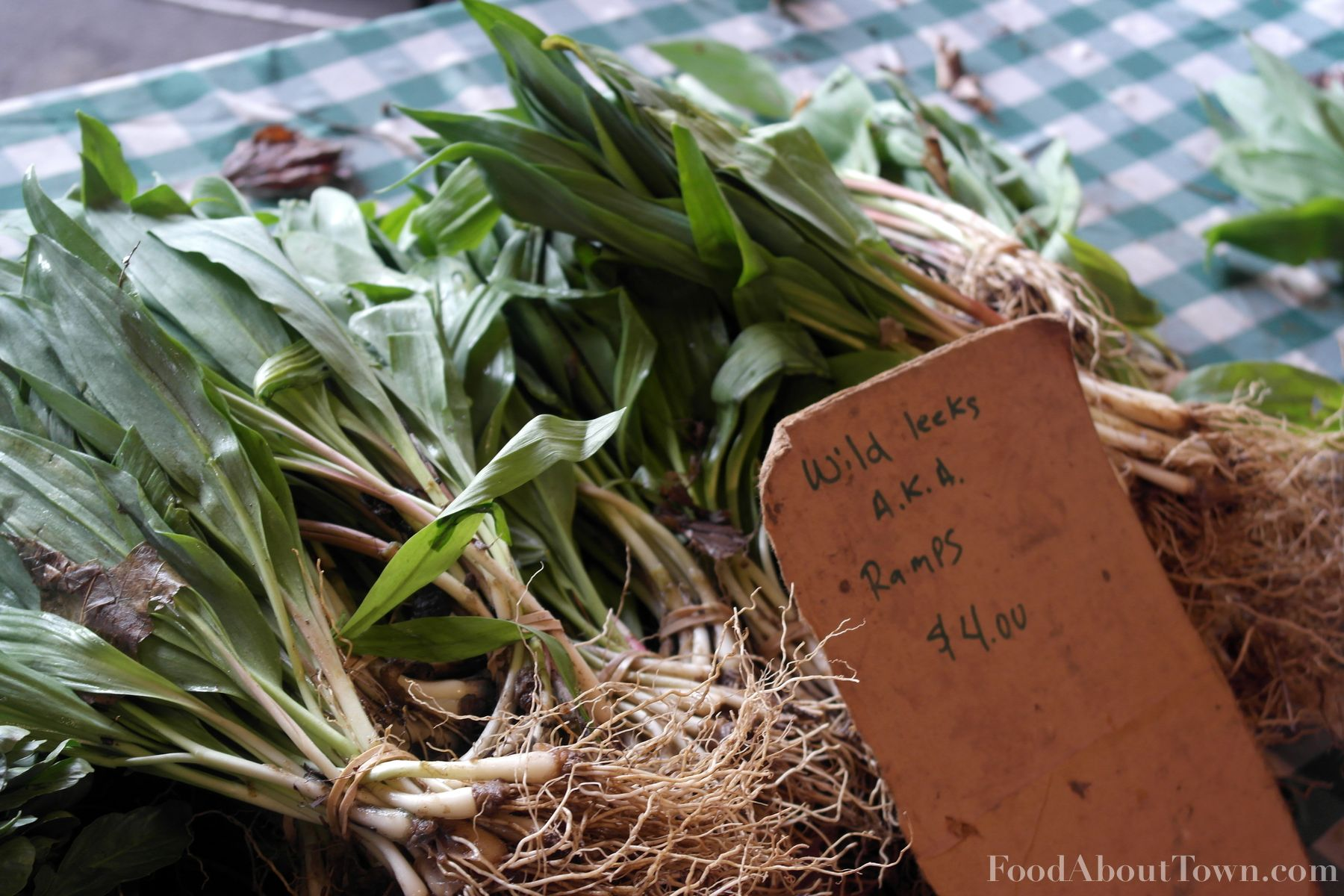 Flowers Farm Ramps
